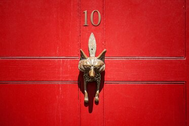 SA Law Red Fox Front Door