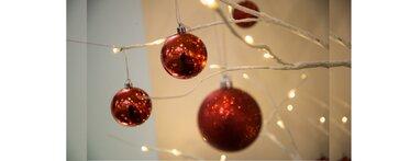SA Law Christmas Decs